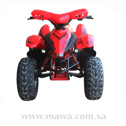 DOLPHIN 100CC Red
