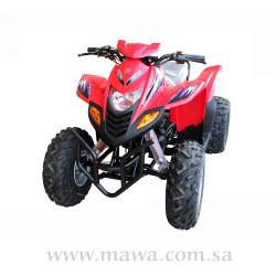 FALCON 100cc Red